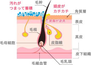界面活性剤によっては必要な皮脂や水分を奪ってしまうことも